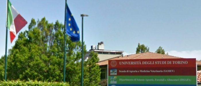 SAMEV - Università degli studi di Grugliasco